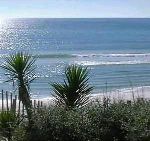 florida hotels, beaches of south walton,destin fl beach houses, attractions, florida gulfarium,destin adventure,vacation fun,florida destination resorts,travel information,worlds luckiest fishing village,spring seafood festival